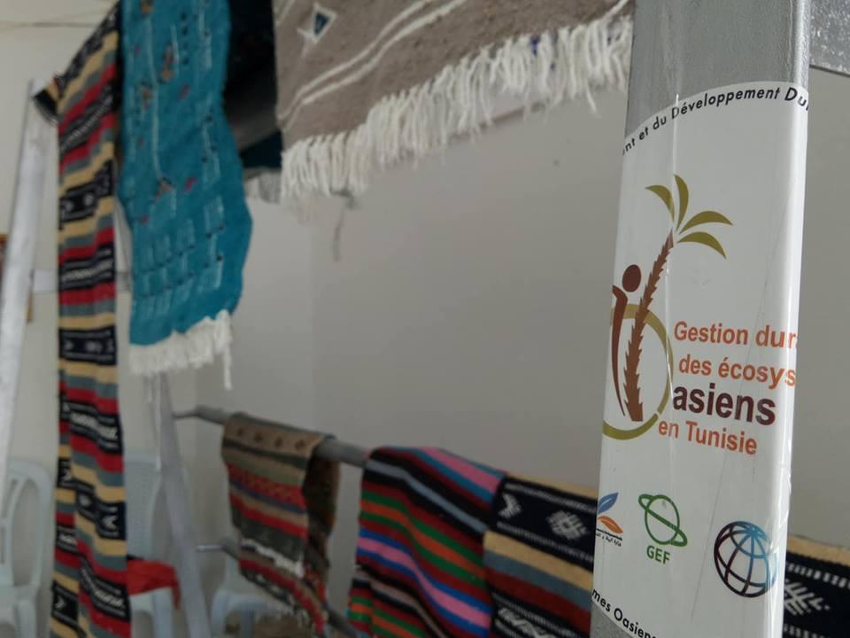 Micro Projet Gestion Durable Des écosystèmes Oasiens En